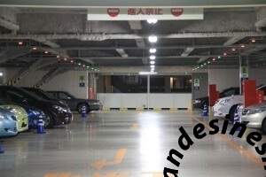 parking-guidance-system-for-singapore-changi-airport